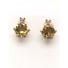 9ct Yellow Gold Gem Stone Stud Earrings